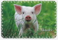 Pkt #9-1037-Thank You Card